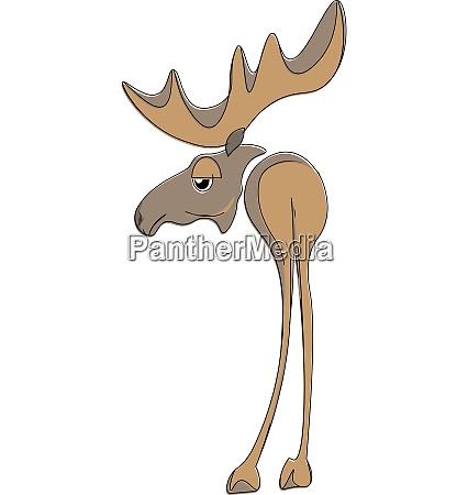 moose vector or color illustration
