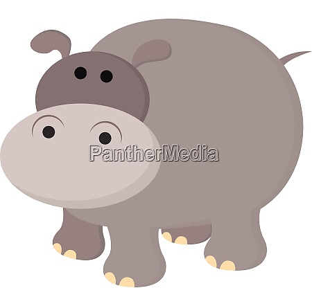 hippopotamus vector or color illustration