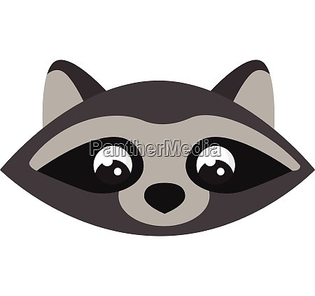 raccoon wearing hat vector or color