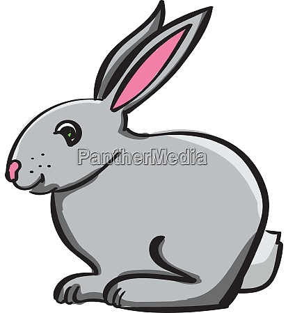 small bunny illustration vector on white