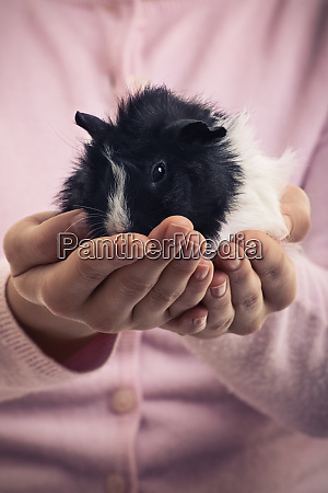 close up of girl holding pet