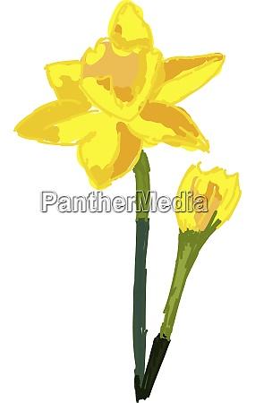 yellow flower illustration vector on white