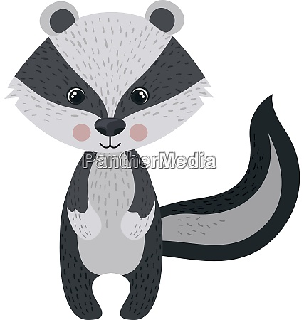 cute racoon illustration vector on white
