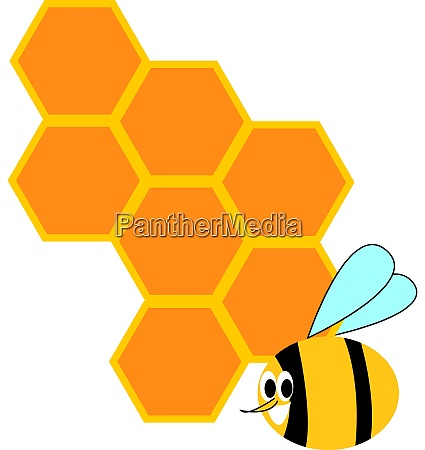 honeycomb and bee illustration vector on
