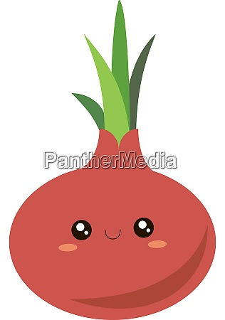 red onion illustration vector on white