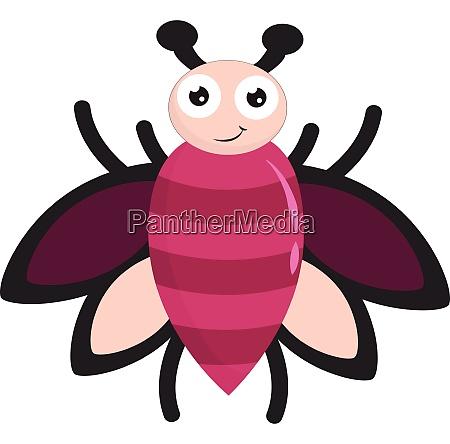 pink bug vector or color illustration