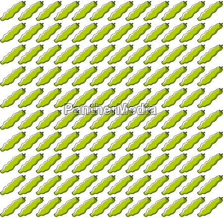 beans wallpaper illustration vector on white