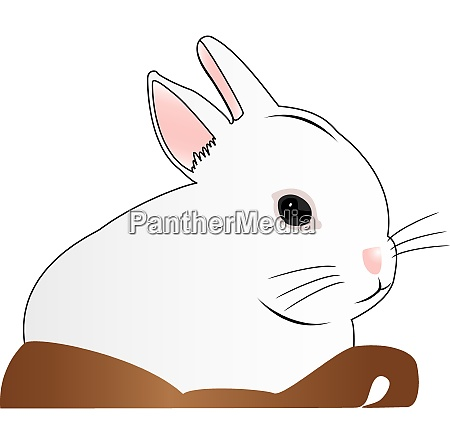 white rabbit in basket