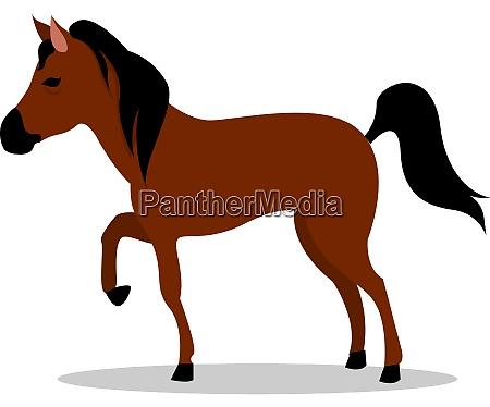 brown horse illustration vector on white