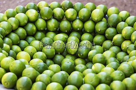 limes on display at the omdurman