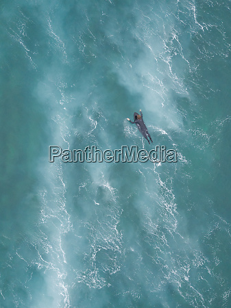 aerial view of a man surfing