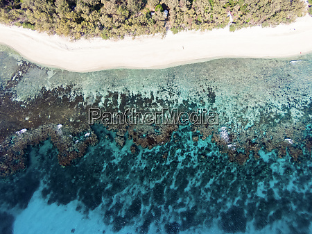 aerial view of lady elliot island