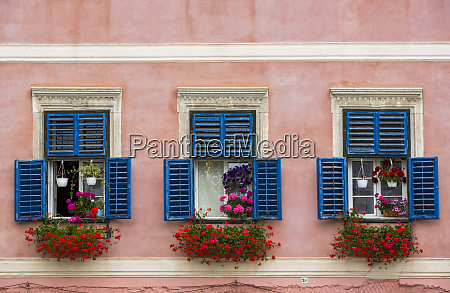 flowers decorate residential windows with blue