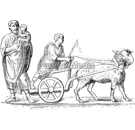 goat hitched vintage engraving