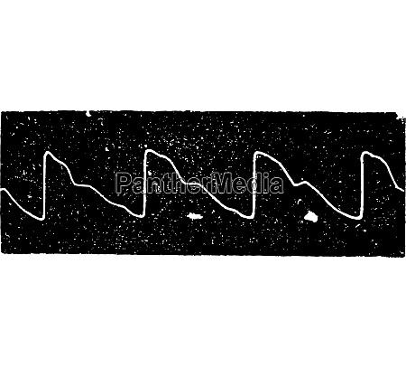 normal pulse vintage engraving