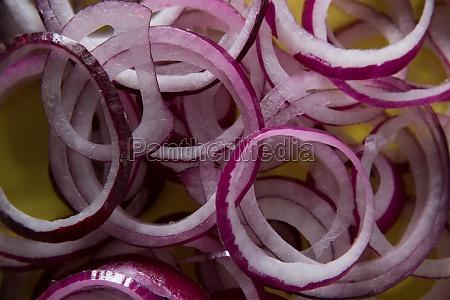 fresh sliced onions