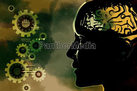 presentation of human brain