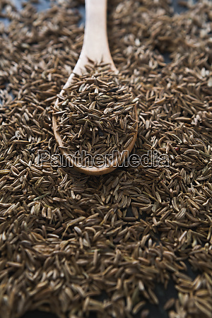 cumin with spoon