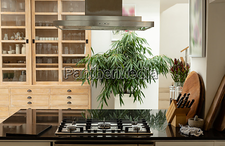 kitchen interior with worktop at home