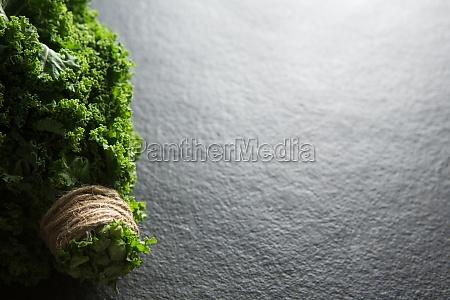 high angle view of fresh kale