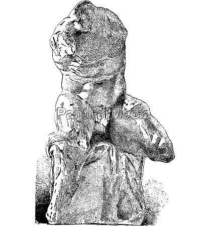 belvedere torso vintage engraving