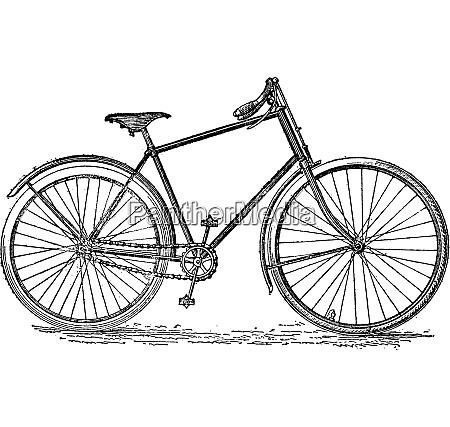 velocipede bicycle vintage engraving