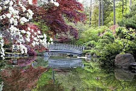 zen like japanese gardens