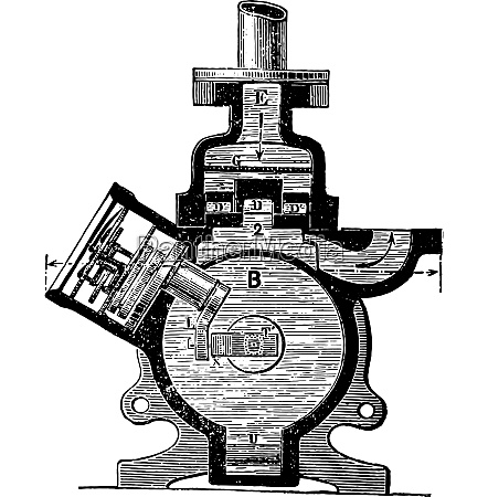 cross section vintage engraving