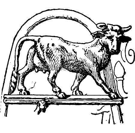 heifer pourtales tripod vintage engraving