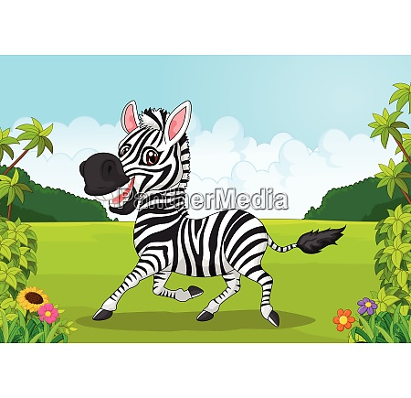 cartoon adorable zebra