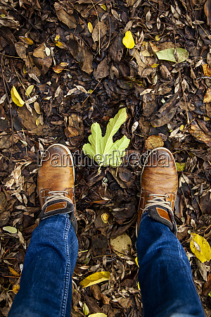 feet in fallen leaves