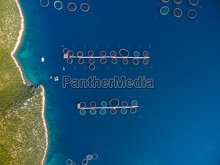 aerial view of fish farming on