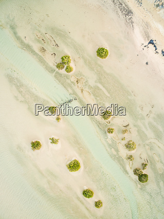 aerial view of sotavento lagoon in