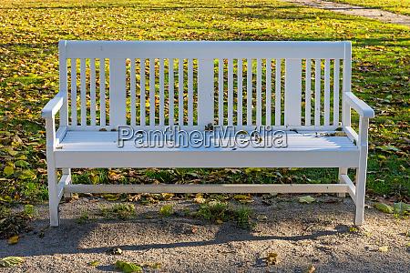 white bench park