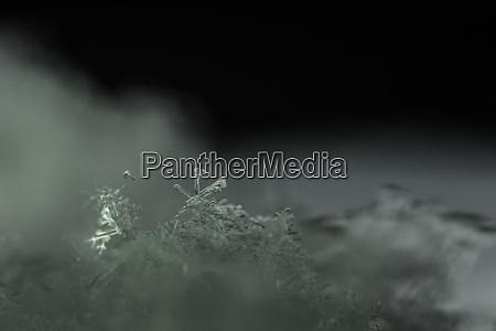 heller schneekristall im schnee