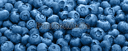 close up background of blue toned
