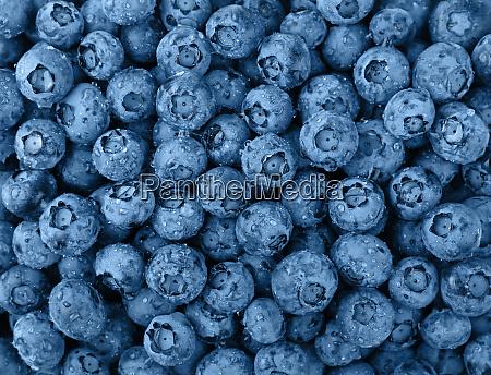 background of blue toned fresh washed