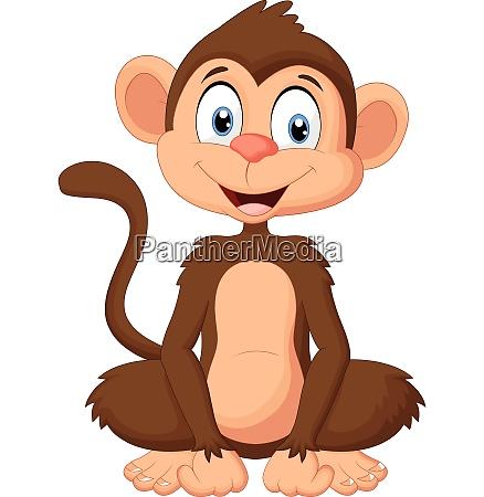 cartoon monkey sitting on white background