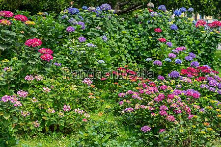 cultivated garden switzerland