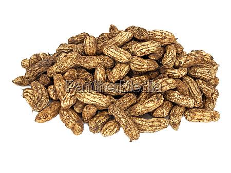 freshly picked peanuts