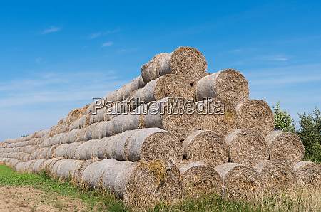 haystack against a background of the