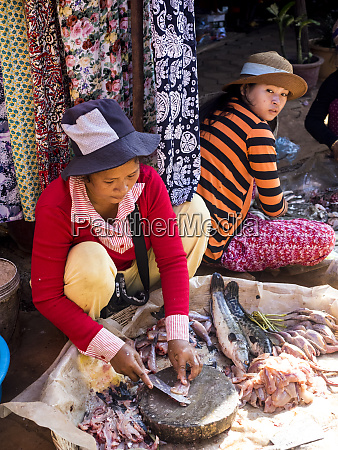 cambodia siem reap women cleaning fish