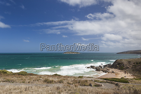 australia fleurieu peninsula victor harbor king
