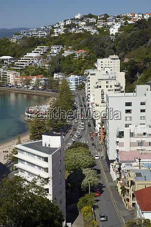 oriental parade oriental bay wellington north