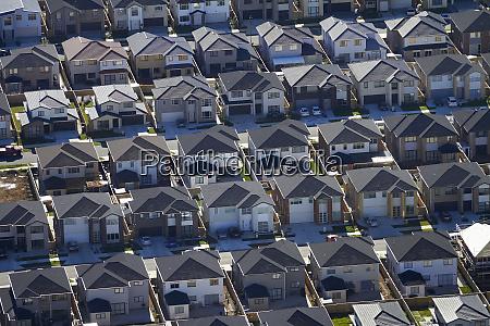 new housing development flat bush auckland
