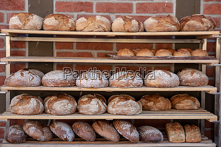 bakery products a variety of fresh