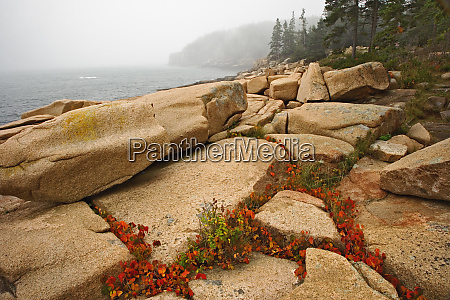 granite boulders and distant otter cliff