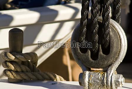 usa maine castine close up view