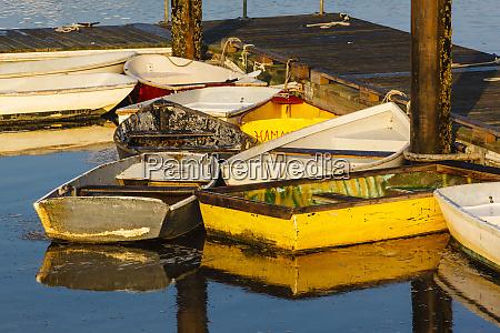 skiffs at the dock in pamet