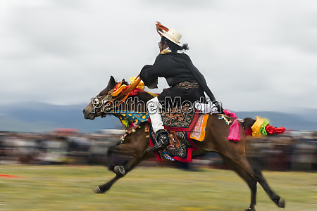 tibetan peoples horse race at horse
